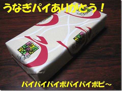 IMG_9664うなぎぱい