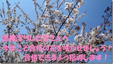 IMG_1040文字