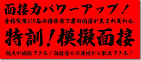 公務員試験面接セミナー 模擬面接 東京 大阪